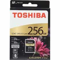 Compare Toshiba EXCERIA PRO  N502, SDHC Card, 256  GB  at KSA Price